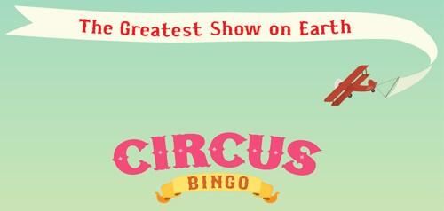 Circus Bingo New Bingo Site