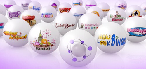 new bingo site live bingo network