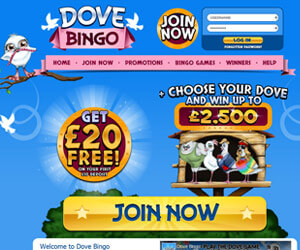 Dove Bingo Home