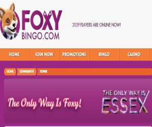 Foxy Bingo TOWIE