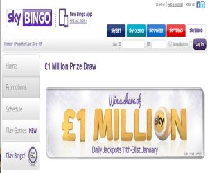 Sky Bingo January 1m Jackpot