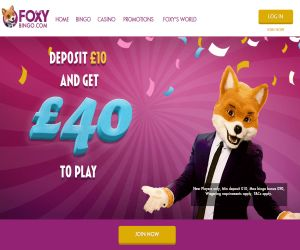 Foxy Play with 40