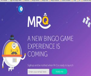 Mr Q Bingo