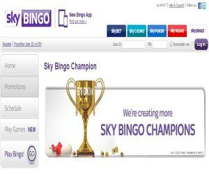 Sky Bingo Champions