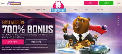 Ted Bingo Home