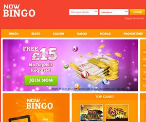 Now Bingo Screen shot