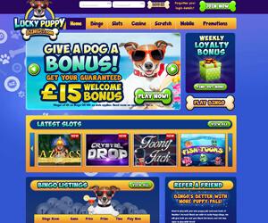 Lucky Puppy Bingo New