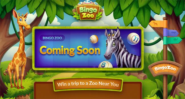 Bingo Zoo home