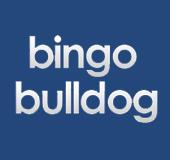 Bingo Bulldog