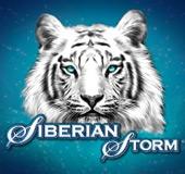 Siberian Storm Slots