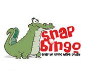 Snap Bingo