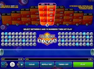 Super Bonus Bingo Screenshot