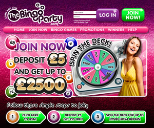 The Bingo Party Screenshot