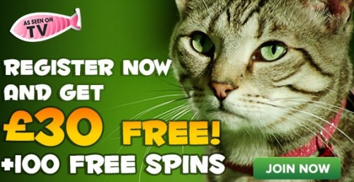 VIDEO: Kitty Bingo's NEW Free Spins TV Ad