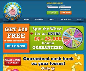 Money Saver Bingo Screenshot