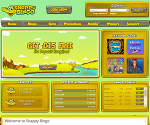 Snappy Bingo Screenshot
